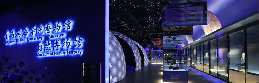 场馆介绍 一期一楼和二期四层为宇宙演化展区和动物标本展区,宇宙演化展区是宇宙与自然的展示,内容包括宇宙形成、银河系、太阳系、奇石等内容,充分利用声、光、电等高科技手段探索宇宙的奥秘,追寻生命的起源,精心打造成集知识性、趣味性、参与性于一体的自然生态景观。动物标本展区突出自然地貌景观,展示动物真实的生存环境,让我们回归自然,游赏百兽争奇,静观万鸟斗艳,倡导人与自然和谐发展。动物标本展区目前有来自非洲、南美洲、北美洲、欧洲、亚洲和大洋洲等世界各地的动物标本2000多件,1000多种,是国内高校中收集地域最广